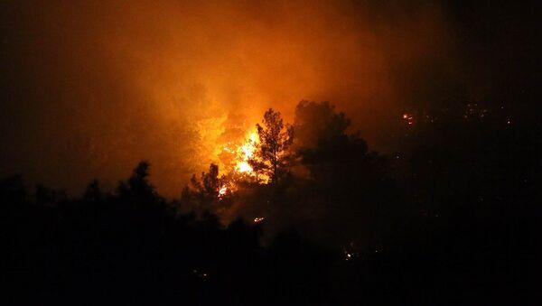 Antalya'da üç ayrı noktada orman yangını çıktı - Sputnik Türkiye