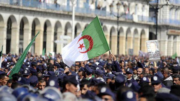Cezayir bayrağı - Sputnik Türkiye