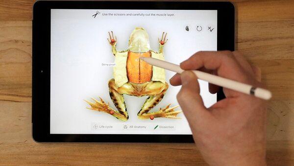 iPad 9.7 - Sputnik Türkiye