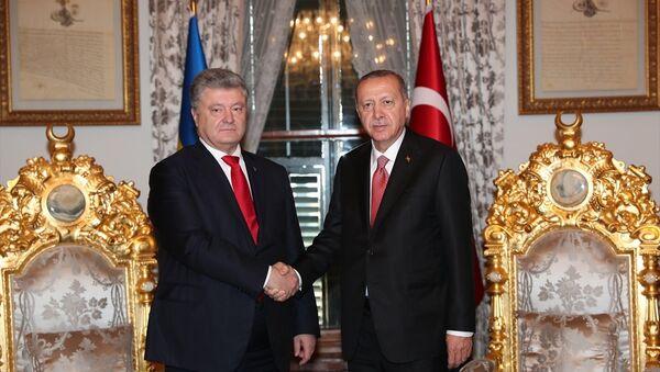 Türkiye Cumhurbaşkanı Recep Tayyip Erdoğan ve Ukrayna Devlet Başkanı Petro Poroşenko - Sputnik Türkiye