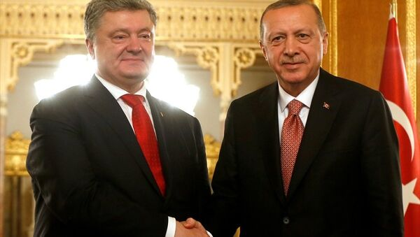 Türkiye Cumhurbaşkanı Recep Tayyip Erdoğan, Ukrayna Devlet Başkanı Petro Poroşenko - Sputnik Türkiye