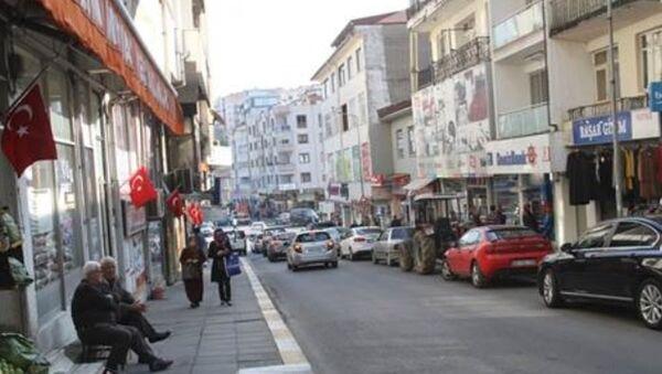 Düzce'de Türk Bayraklarının Çalındığı İddiası - Sputnik Türkiye