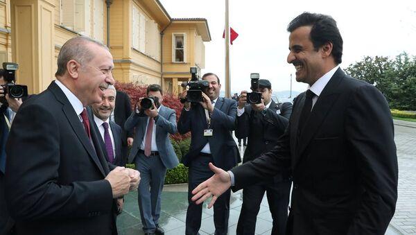 Türkiye Cumhurbaşkanı Recep Tayyip Erdoğan, Katar Emiri Şeyh Temim bin Hamed Al Sani - Sputnik Türkiye