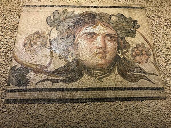 Zeugma Çingene Kızı mozaiğinin parçaları - Sputnik Türkiye