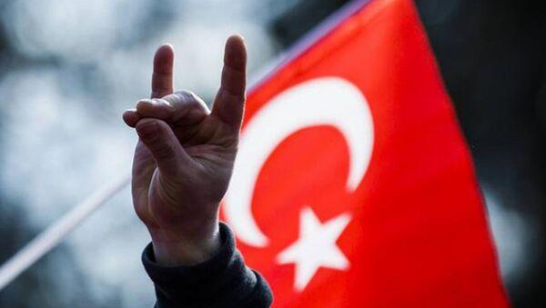 bozkurt - Sputnik Türkiye