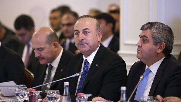 Dışişleri Bakanı Çavuşoğlu - Reform Eylem Grubu'nun 5. Toplantısı - Sputnik Türkiye