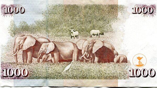 1000 Kenya şilini banknotunun önyüzünde ülkenin ilk lideri Jomo Kenyatta'nın, arka yüzünde Afrika fillerinin resmi var. - Sputnik Türkiye