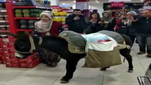 Poşet parası vermemek için markete eşekle geldi - Sputnik Türkiye
