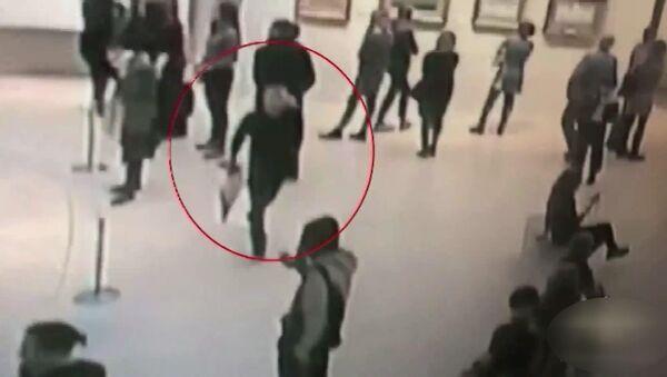 1 milyon lira değerindeki Kırım tablosu, Rus sanat galerisinden herkesin gözü önünde çalındı - Sputnik Türkiye