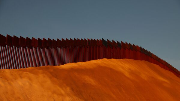 ABD- Meksika sınırı - Sputnik Türkiye