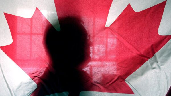Andre Senecal, silhouetted behind a Canadian flag, Feb. 10, 2004, has been trying to get Americans to understand that Canada is more than polar bears, red-coated constables, hockey and long winters, introducing students to some of the intricacies of the European style of government. - Sputnik Türkiye