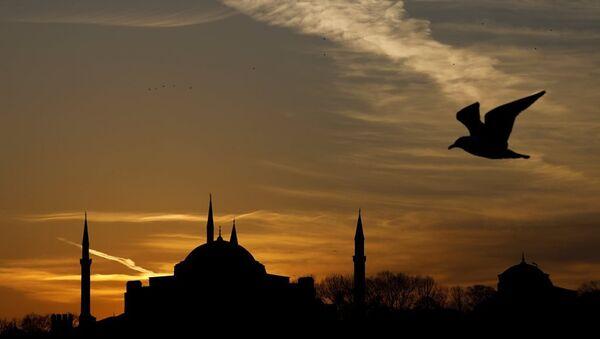 İstanbul - Ayasofya - Sputnik Türkiye