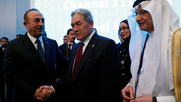 Yeni Zelanda Başbakan Yardımcısı ve Dışişleri Bakanı Winston Peters ile Dışişleri Bakanı Mevlüt Çavuşoğlu - Sputnik Türkiye