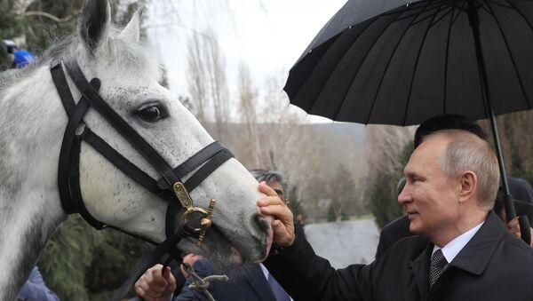 Vladimir Putin, kendisine hediye edilen atla  - Sputnik Türkiye