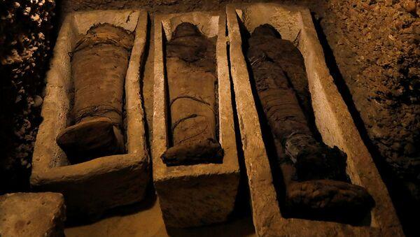 Mısır'da beş bin yıllık mumyalar bulundu - Sputnik Türkiye