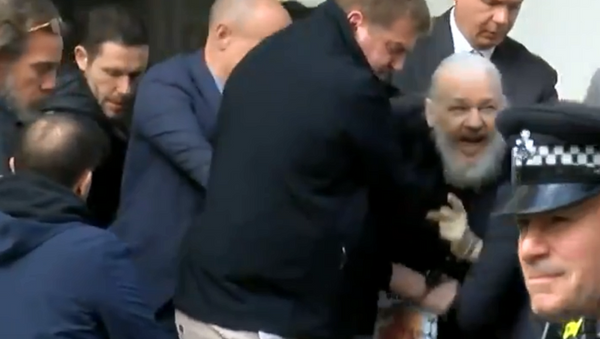 Julian Assange gözaltına alındı - Sputnik Türkiye