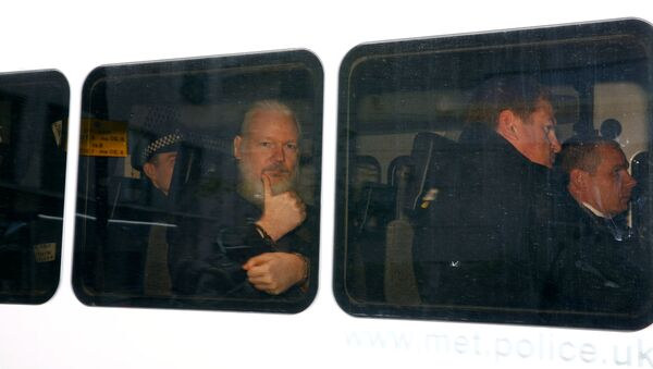WikiLeaks kurucusu Julian Assange gözaltına alındı. - Sputnik Türkiye