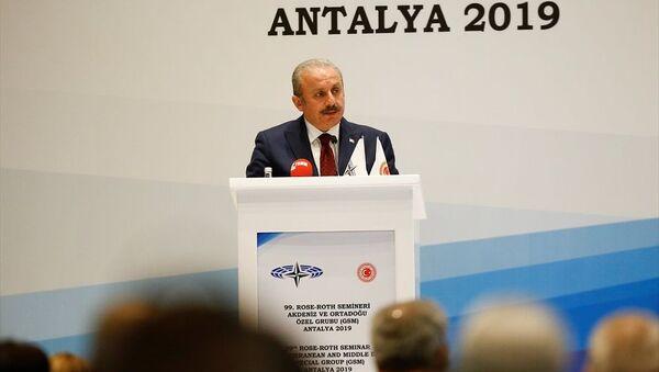 Mustafa Şentop - Sputnik Türkiye