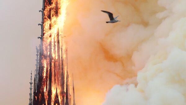 Paris Notre Dame Katedrali'nde yangın çıktı - Sputnik Türkiye