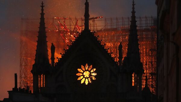 Notre Dame Katedrali - Sputnik Türkiye