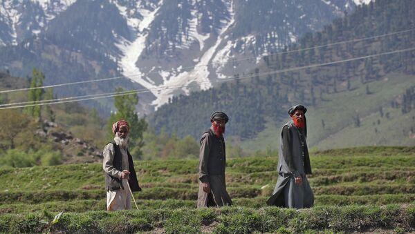 Hindistan'daki seçimlerde, bazı seçmenler oy kullanabilmek için uzun yol katediyor. - Sputnik Türkiye
