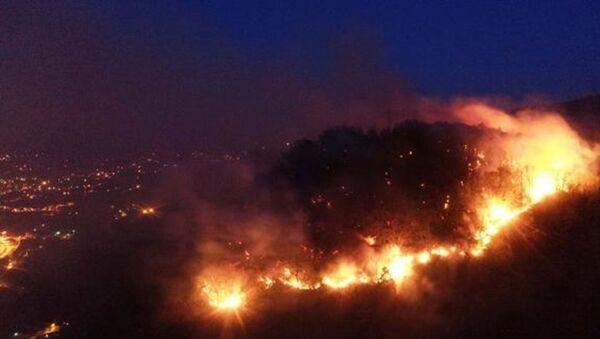 Giresun'da kontrol edilemeyen yangın büyüyor - Sputnik Türkiye