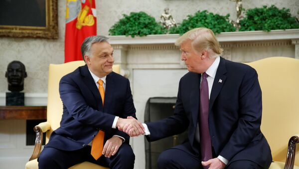 ABD Başkanı Donald Trump ve Macaristan Başbakanı Viktor Orban - Sputnik Türkiye