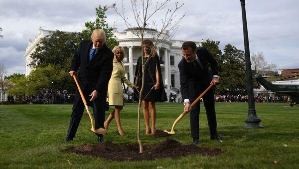 Fransa Cumhurbaşkanı Emmanuel Macron ile ABD Başkanı Donald Trump'ın birlikte Beyaz Saray'ın bahçesine diktikleri sembolik dostluk fidanı - Sputnik Türkiye