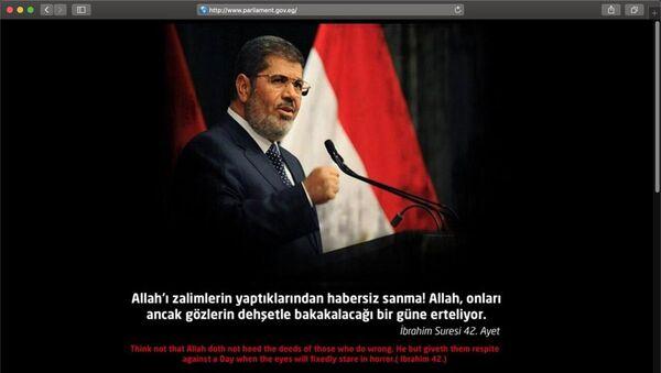 Türk siber korsanlar Mısır'daki bazı devlet sitelerini hackledi - Sputnik Türkiye