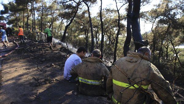 Heybeliada'da çıkan orman yangını - Sputnik Türkiye
