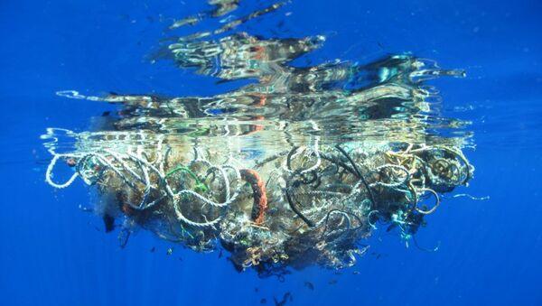 Çevreciler Pasifik Okyanusu'ndan 40 tondan fazla çöp çıkardı - Sputnik Türkiye