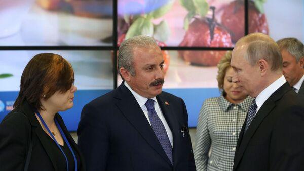 Mustafa Şentop - Vladimir Putin - Sputnik Türkiye