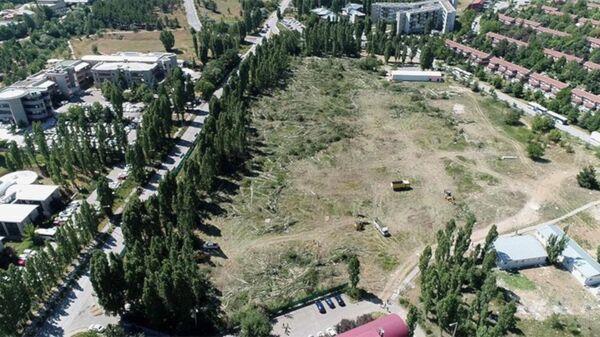 ODTÜ'deki ağaç kesimi havadan görüntülendi - Sputnik Türkiye