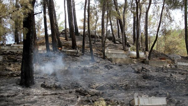 Muğla'nın Dalaman ilçesinde üç gün önce çıkan ve Fethiye Göcek Mahallesine sıçrayan orman yangını söndürüldü. - Sputnik Türkiye