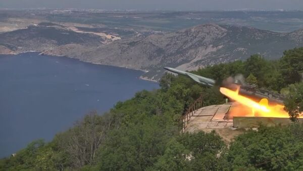 Admiral Makarov fırkateyni, Utes kıyı füze sisteminden ateşlenen füzeyi başarıyla imha etti - Sputnik Türkiye