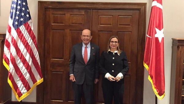 Ruhsar Pekcan ile ABD'li mevkidaşı Wilbur Ross - Sputnik Türkiye
