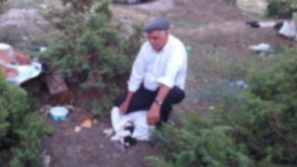 Denizli -  Çameli - 4 köpek yavrusunu çuvala koyup ormana bıraktılar - Sputnik Türkiye