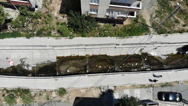 Avcılar Batı Nil virüsü - Sputnik Türkiye