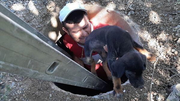 Adana'nın Tufanbeyli ilçesinde, rögara düşen köpek yavrusu çocukların dikkati sayesinde kurtarıldı. - Sputnik Türkiye