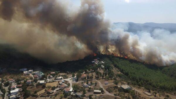 Bodrum ve Milas'ta orman yangını; alevler köylere ulaştı, evlerini terk ettiler - Sputnik Türkiye