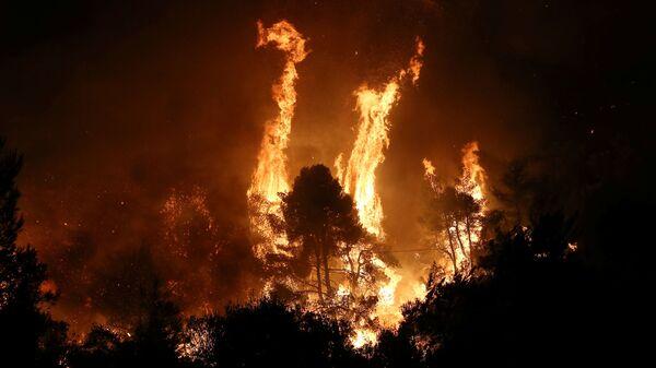 Yunanistan'da orman yangını  - Sputnik Türkiye