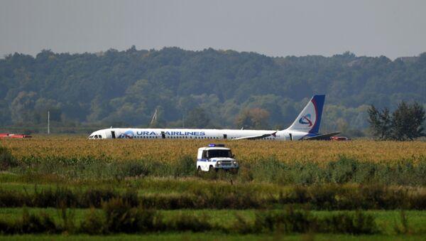 Mısır tarlasına acil iniş yapan Rus yolcu uçağı - Sputnik Türkiye