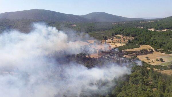 Urla, orman yangını - Sputnik Türkiye