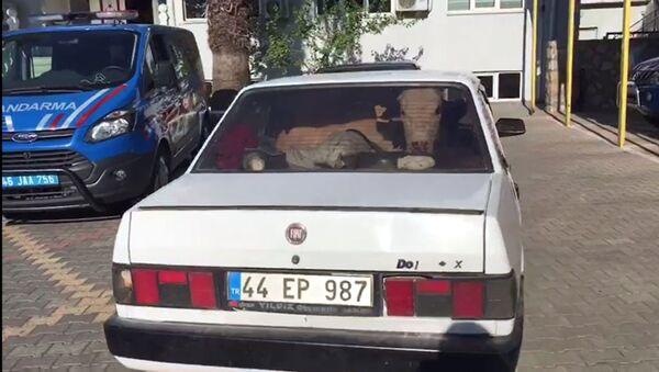 jandarmanın 'dur' ihtarına uymayarak, kaçan 2 otomobil sürücüsü, kovalamaca sonunda durduruldu. Araçların arka koltuklarında çalıntı olduğu belirlenen 2 inek ele geçirilirken, 5 kişi de gözaltına alındı. - Sputnik Türkiye