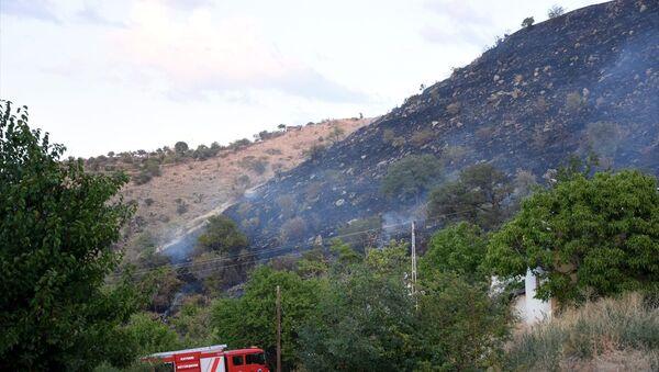 Kayseri'de evine akrep girmesine kızan kişinin bahçesinde yaktığı ateş, 50 dekarlık arazideki otları da küle çevirdi. - Sputnik Türkiye