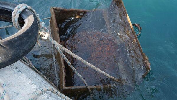 Denizden çöp konteyneri çıkardılar - Sputnik Türkiye