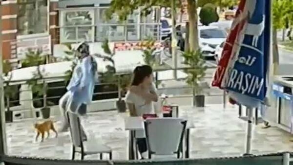 Kediye tekme atan kadın güvenlik kamerasına yakalandı - Sputnik Türkiye