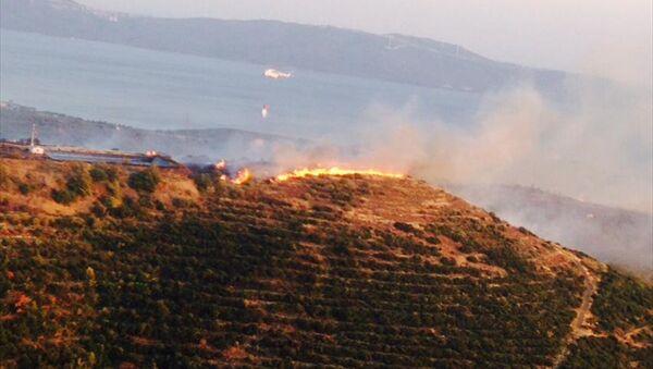Balıkesir'in Erdek ilçesi Oduncuyolu mevkisindeki çıkan orman yangını kontrol altına alındı. - Sputnik Türkiye
