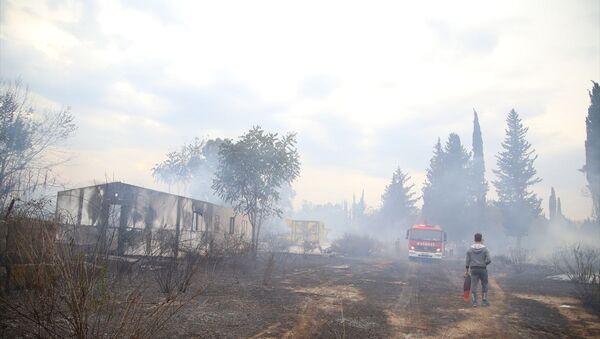Antalya'da mahalle arasındaki çalılık alanda çıkan yangın kontrol altına alındı. Sosyal medyadaki canlı yayından yangın olduğunu öğrenen çocuklar da bidonlarla söndürme çalışmalarına destek oldu. - Sputnik Türkiye