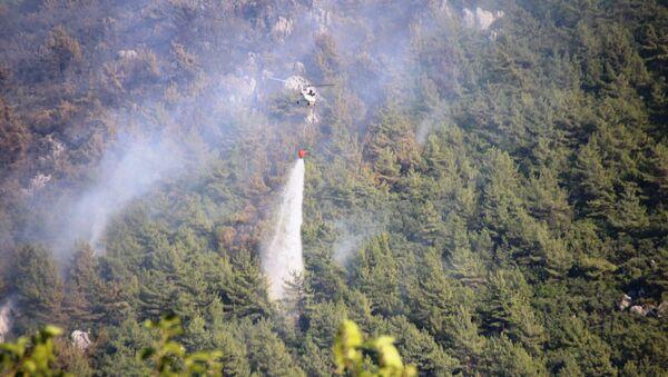Orman yangınları - Sputnik Türkiye